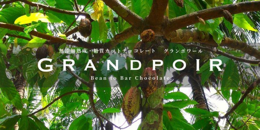 無添加熟成・糖質カットチョコレートグランポワール